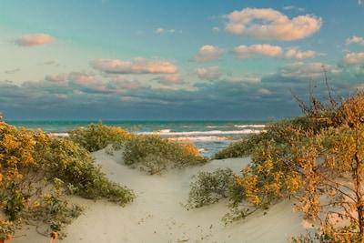 Beach Near You!
