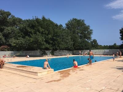 La grande piscine de la résidence à eau débordante d'environ 22 mètres de long