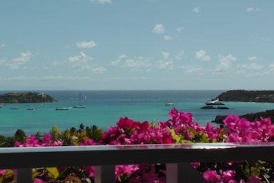 view from verandas