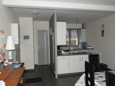 Entrée: Penderie à gauche et porte des toilettes. Miroir en face  porte d'entrée
