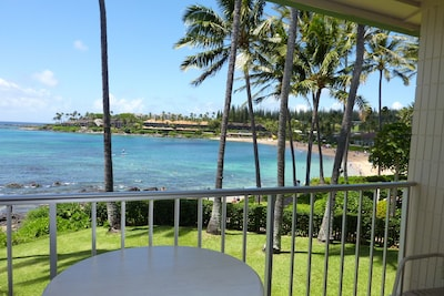 A202: Panoramic view from the lanai