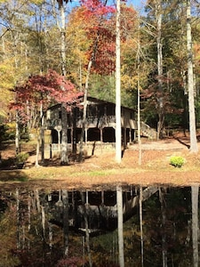 Fall at the Treehouse