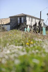 Le Gîte du Cramail en pleine campagne entourée de vignes