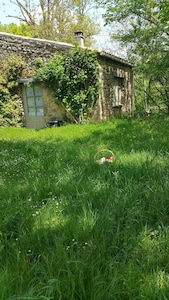 On y pénètre entre rosier et jasmin