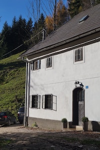 Das Forsthaus Gut Traunfried - In Alleinlage am Rande des  Nationalparks