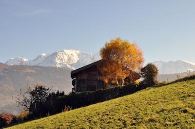 Le chalet face au Mont Blanc et Dôme de Miage