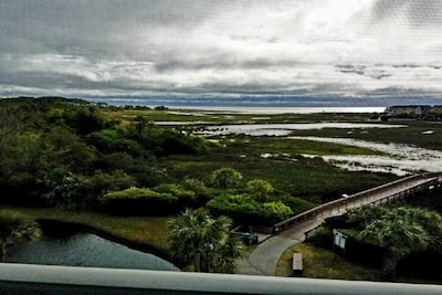 View of marsh and ocean  at high tide as seen through screened balcony