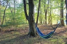 A hammock in the trees - a mountain dream!