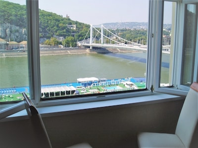View of Danube from living room window.