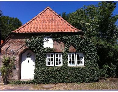Oldenswort, Schleswig-Holstein, Deutschland