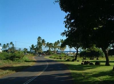 Drive to Poipu Beach Park - We are a one minute walk to beach!