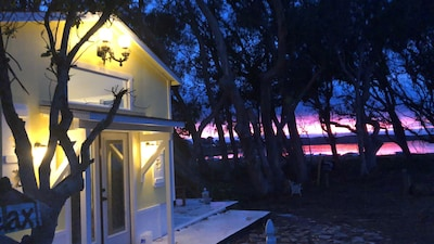 Morro Bay Dream Cottage ⚓️ In the middle of Morro Bay Bird Preserve and Estuary!