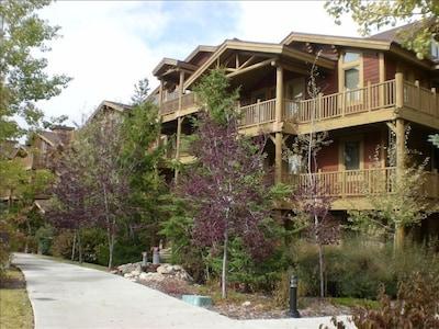 Black Bear Lodge in Summer