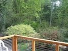 View from deck off master bedroom