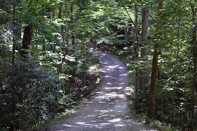 Beautiful scene as you drive down the long driveway - exhale.