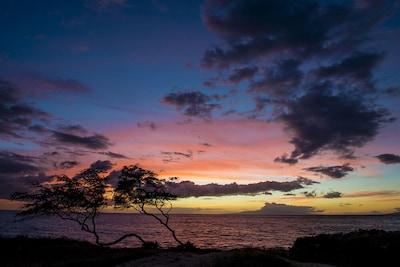 Hale Kamaole, Kihei, Hawaii, United States of America