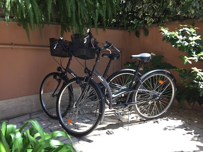 Two bicycles...YEAH!