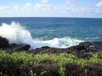 Watch the crashing waves, look for turtles, dolphins, and whales in season.