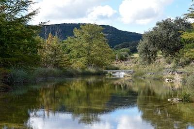 Parc naturel d'État de Lost Maples, Vanderpool, Texas, États-Unis d'Amérique