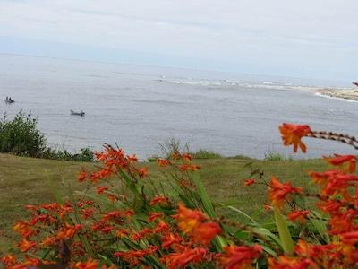 Fishermen across the yard.