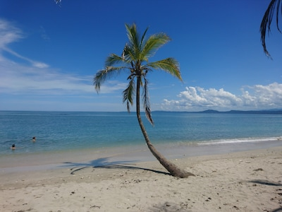 Stunning Cahuita National Park