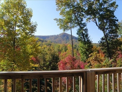The great view from the deck
