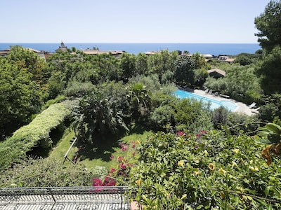 Half hectare park that includes a lawn with a swing, a lemon orchard, bougainvillea, roses, palm trees and a wonderful pine
