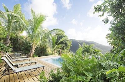 Brewers Bay Beach, Brewers Bay, Tortola, British Virgin Islands