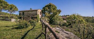 Castello di Radda Winery, Radda in Chianti, Tuscany, Italy