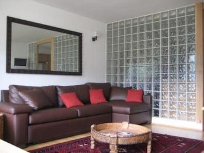 Petit salon avec canapé lit télévision DVD 1 table pour diner et 4 chaises