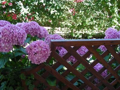 A detail of the veranda fence