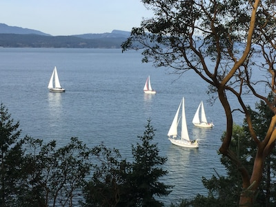 Stunning views of the Sail Boats from the kitchen, living and dining rooms.