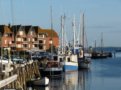 Orth ist bekannt durch seinen schönen Yachthafen