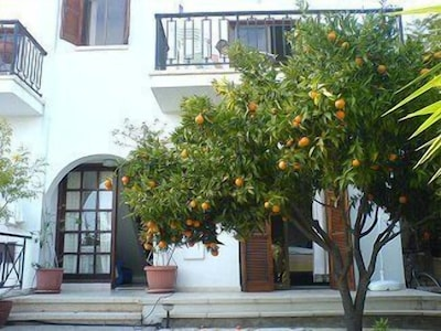 Front of Lemontree House