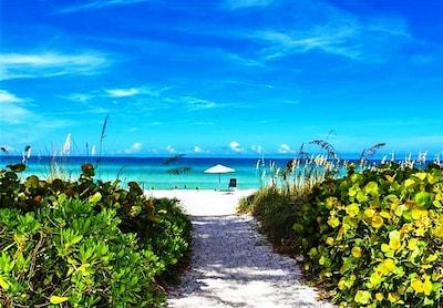 Cannons Marina, Longboat Key, Florida, United States of America