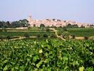 View of Nezignan among the vineyards