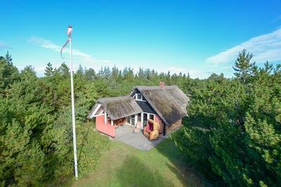 Tøndermarsken, Tonder, Syddanmark, Denmark