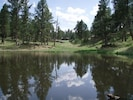 view of pond on the property and the cabin in the distance