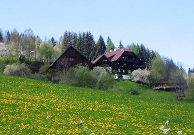 Musée Porsche, Gmünd in Kärnten, Carinthie, Autriche