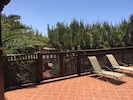 Mature pine trees give privacy to the back of the villa.