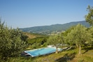 The pool set among the olive trees, private yet with great views over the valley