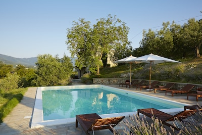 The pool (12 x 6 metres, or approx 40 x 20 feet), terrace and house beyond