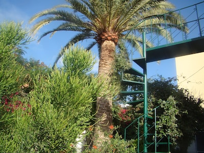 Studio Marcel, cómodo y económico, Tenerife