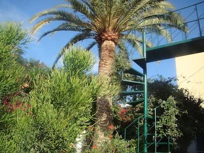 Studio Marcel, Comfortable and economical, Tenerife