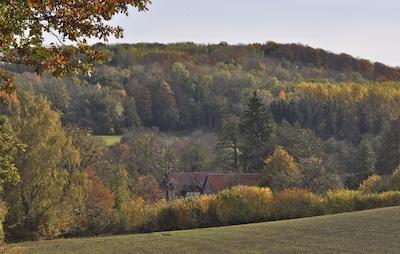 Blick auf die Mühle im Tal