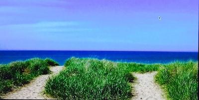 Our beach, Lake Michigan's best beach