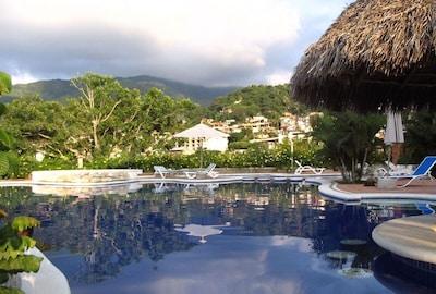 Infinity pool and shady palapa