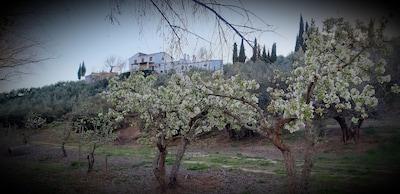 Villacarrillo, Andalousie, Espagne