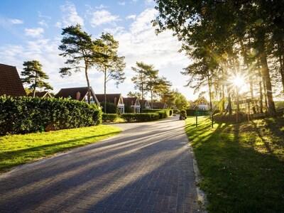 Dorfpark Bösel, Bösel, Nedersaksen, Duitsland