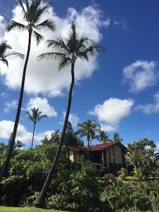 Paniolo Estates, Waikoloa, Hawaii, USA